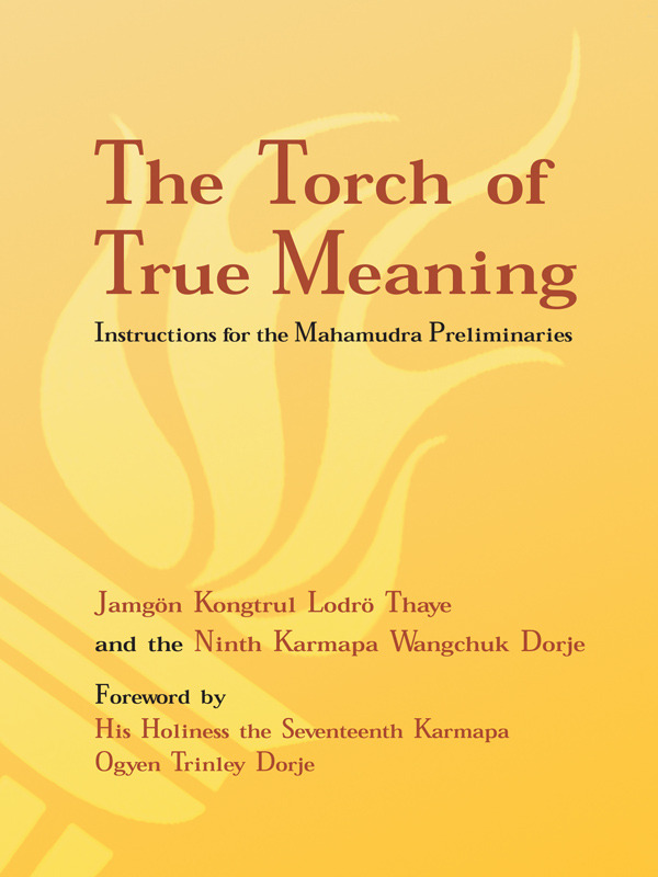 The Torch of True Meaning