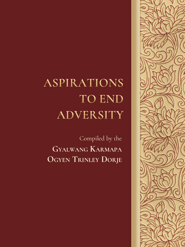 Aspirations to End Adversity